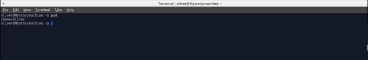 terminal_pwd